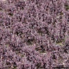 FLOWER TUFTS - XL, LAVENDER
