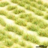NATURAL ELEMENTS - SMALL, WILD GRASS