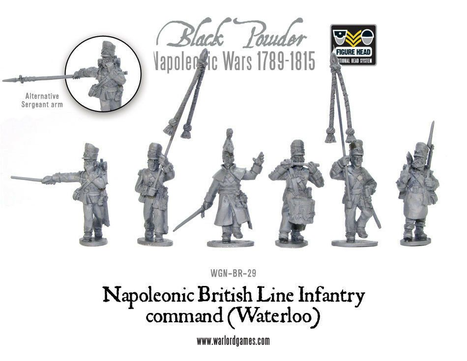 Waterloo British Line Infantry Command